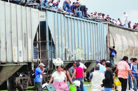 Tras la huella de inmigrantes