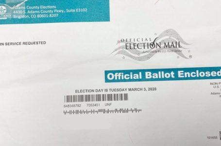 ¿Y usted ya está listo para  votar en la elección primaria?