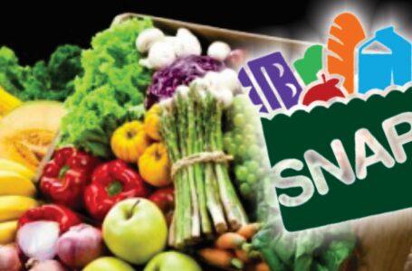 Luz verde para compras de alimentos  por internet pagando con SNAP