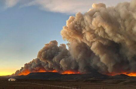 Furioso incendio forestal