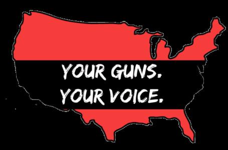 Exige almacenamiento seguro de armas a los propietarios