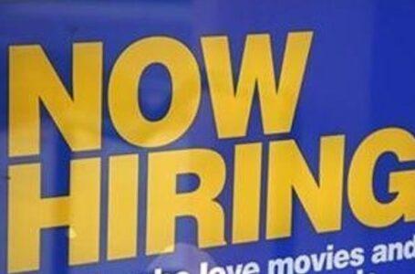 Pagaría a desempleados hasta $1,600 si obtienen trabajo de tiempo completo