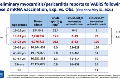 Problemas cardíacos en los estudiantes vacunados desencadenan un escrutinio médico y legal de los mandatos de COVID del campus