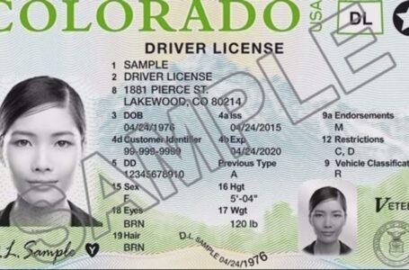 Nueva ley ajusta reglas de la licencia de conducir y tarjeta de identificación
